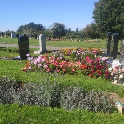 flowers on graves at the cemetery - Click to open full size image
